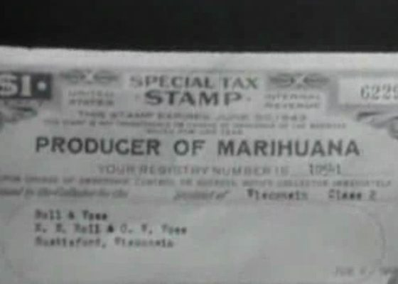 High the true tale of American Marijuana (2008)